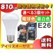 [5年保証]  アイリスオーヤマ LED電球 E26 人感センサー付 60W相当 810lm [選べる3個セット 送料無料] 電球色/昼白色  LDR8L-H-S6/LDR8N-H-S6