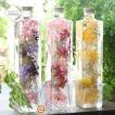 (母の日 早割)ハーバリウム Herbarium ハーバリウム500 (スクエア)(瓶 ハーバリューム ギフト プレゼント プリザーブドフラワー 花 贈り物)(送料無料)