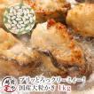 牡蠣 かき カキ 生 広島産 1.0kg L・2Lサイズ (30粒前後入) 加熱用 セット ギフト 海鮮BBQ バーベキュー ((冷凍))