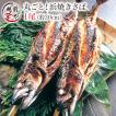 浜焼きさば(丸焼きサバ) 1尾全長約30cm ギフト  ((冷凍))