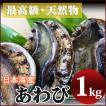 アワビ(1kg)新鮮・海の幸 天然の日本海産あわび 獲れたてを産地直送[冷蔵]