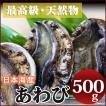 アワビ(500g)新鮮・海の幸 天然の日本海産あわび 獲れたてを産地直送[冷蔵]