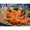 せいこがに(中)福井県産せいこ蟹(セイコガニ) 約150g×1杯 御歳暮 ギフト  [冷蔵]