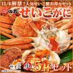 せいこがに5杯セット 福井県産せいこ蟹(セイコガニ・セコガニ)約100〜120g(小)×5杯 御歳暮 ギフト  [冷蔵]