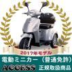 電動ミニカー 電動3輪車 シルド【2017年モデル】