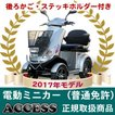 電動ミニカー  電動4輪 シルドLX4W(シルバー)(後ろカゴ・ステッキホルダー付き) アクセス製