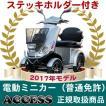 電動ミニカー  電動4輪 シルドLX4W(シルバー)(ステッキホルダー付き) アクセス製