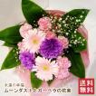花束「ムーンダストとガーベラの花束」 誕生日 お祝い 母の日 父の日 送別 退職 花 ギフト プレゼント 紫 カーネーション