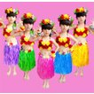 フラダンス衣装 コスプレ コスチューム ハワイ 子供用 可愛い 派手色 男女兼用 演出服 仮装  ハロウィン
