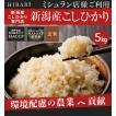 米 5kg お米 コシヒカリ 玄米 平成30年産 送料無料 新潟県産 タイムセール