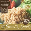 新米 コシヒカリ 5kg 米 お米 玄米 令和元年産 送料無料 新潟県産 タイムセール スペシャルセレクト