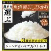米 10kg(5kg×2袋) コシヒカリ 新米 お米 29年産 新潟  岩船産こしひかり 送料無料 Yahoo!ベストストア受賞 選べる 白米 玄米 袋