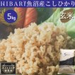 コシヒカリ 5kg 魚沼産 米 お米 コシヒカリ 玄米 平成30年産 送料無料 新潟県産 タイムセール