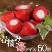 アイスクリーム 業務用 春摘み苺アイス(50粒)