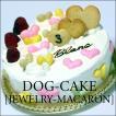 飼い主さんも一緒に!スペルト小麦を使ったレストランの犬用ケーキ「ジュエリー・マカロン」