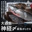大森圭 神経〆鮮魚BOX 3kg / プロ仕様 / 長期熟成可能 / 人気店に信頼される活魚屋 / 期間限定販売
