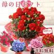 母の日 ギフト 2020 選べる8種の花ギフト カーネーシ...
