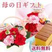 \早割/ 母の日 ギフト 2021  Mother'sアレンジ/ブーケとバウムクーヘンのセット 花 フラワーギフト プレゼント FKHH