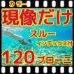 中判カメラ ブローニーフィルム現像+インデックス  フジカラー薬品
