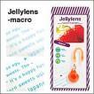 Jelly lens(ジェリーレンズ) macro(マクロ・接写)