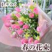 バレンタイン 花 チューリップの花束 Lサイズ ギフト フラワーバレンタインデー花