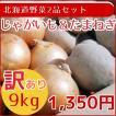 訳あり北海道産野菜2品セット(9kg)