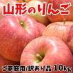 りんご 訳あり サンふじ リンゴ 10kg 本州は送料無料 山形県産 ご家庭用 林檎 りんご箱