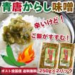 父の日 ご飯のお供 青唐辛子みそ 250g×2パック 青唐がらし味噌 おかず味噌 特産品 名物商品