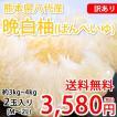 晩白柚 ばんぺいゆ 訳あり 送料無料 世界最大級の柑橘 熊本県八代産 約3kg〜4kg 2玉入 M〜2Lサイズ みかん 蜜柑 ミカン
