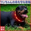 犬 首輪 おしゃれ チョーカー ナイロン ソフト 光る 安全 反射 小型犬 中型犬 大型犬 猫 リード ハーネス 夜道 散歩 レッド