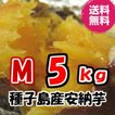 【送料無料】【30年種子島産】【M玉】しっとり甘〜い天然スイ〜ツ安納芋5kg