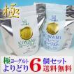 (低温長時間発酵製法/アルミパウチ入り)フロム蔵王 極(KIWAMI)ヨーグルト選り取り6個セット(送料無料)