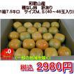 種なし柿 訳あり 和歌山産 1箱7.5kg サイズM,S(40〜46玉入り)