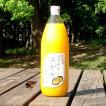 みかんジュース 果汁100% 無添加 無調整 ストレート 1L×2本 送料無料 一部地域を除く