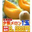 北海道産[夕張メロン1玉入り]7月初旬より発送開始です 送料無料! 赤肉であま〜いメロンです!
