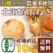 北海道 有機JAS 玉ねぎ 訳あり (裂皮) 10kg(北海道 は...