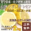 【クール便無料・規格外加工用】広島(とびしま)レモン 2kg 農薬不使用 (広島県 とびしま農園)