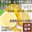 【クール便無料・規格外加工用】広島(とびしま)レモン 5kg 農薬不使用 (広島県 とびしま農園)