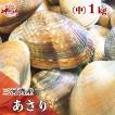 【愛知県三河湾産】天然砂抜きあさり(中)