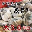 送料無料♪【愛知県伊勢湾産】天然砂抜きあさり(大)3kg