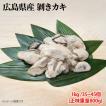訳あり 広島産 剥きカキ 3Lサイズ 1kg 24個から30個入 ひろしま 牡蠣 かき フライ 揚げ物 鍋 安 国産 こくさん
