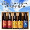 父の日 ビール プレゼント ギフト 地ビール クラフトビール 3,000円 送料無料 不知火海浪漫麦酒 330ml 5本セット 熊本
