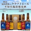 父の日 ビール プレゼント ギフト クラフトビール 地ビール 不知火海浪漫麦酒 330ml 6本セット クール便