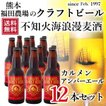 クラフトビール セール 不知火海浪漫麦酒 送料無料(東北北海道除く)カルメン アンバーエール 330ml 12本 熊本 クール便