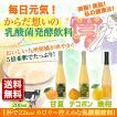 お歳暮 ギフト フルーツ 乳酸菌飲料 セール 早割り ポッキリ 3,000円 送料無料  国産 九州 熊本