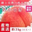 予約販売 福島県産 桃 もぎたて完熟 あかつき 約3kg 11玉〜 阿部農縁 産地直送 もも モモ ふくしまプライド。体感キャンペーン(果物/野菜)