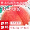 予約販売 福島県産 桃 もぎたて完熟 あかつき 特玉 約3kg 8〜10玉 送料無料 阿部農縁 産地直送 もも モモ