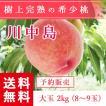 福島県産 桃 もぎたて完熟 川中島 大玉 約2kg 8〜9玉 送料無料 阿部農縁 産地直送 もも モモ