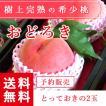 予約販売 福島県産 桃 もぎたて完熟 おどろき 贈答用・ギフト とっておきの2個 送料無料 阿部農縁 もも モモ