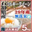 無洗米 5kg ミルキークイーン 石川県産 白米 5kg 平成28年産 送料無料 一部地域を除く